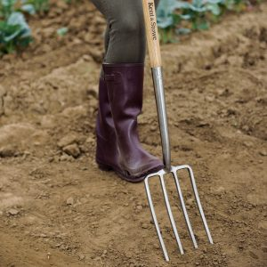 Kent & Stowe stainless steel digging fork in use