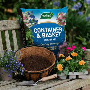 container and basket planting mix