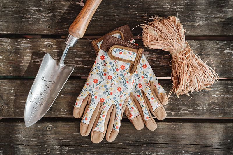 how to care for roses: gloves, trowel and twine
