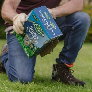 Gro-sure Smart Lawn Seed Shady & Dry Areas in use