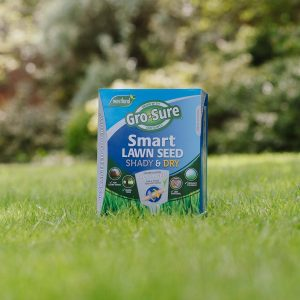 Gro-sure Smart Lawn Seed Shady & Dry Areas on lawn