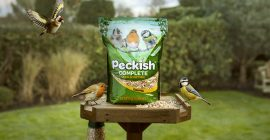 Peckish bag on bird table