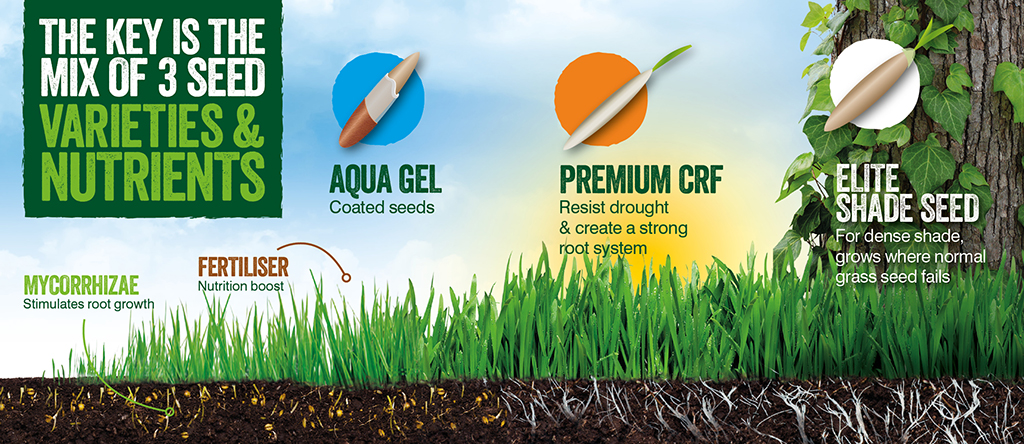 Gro-Sure Smart Lawn Seed2