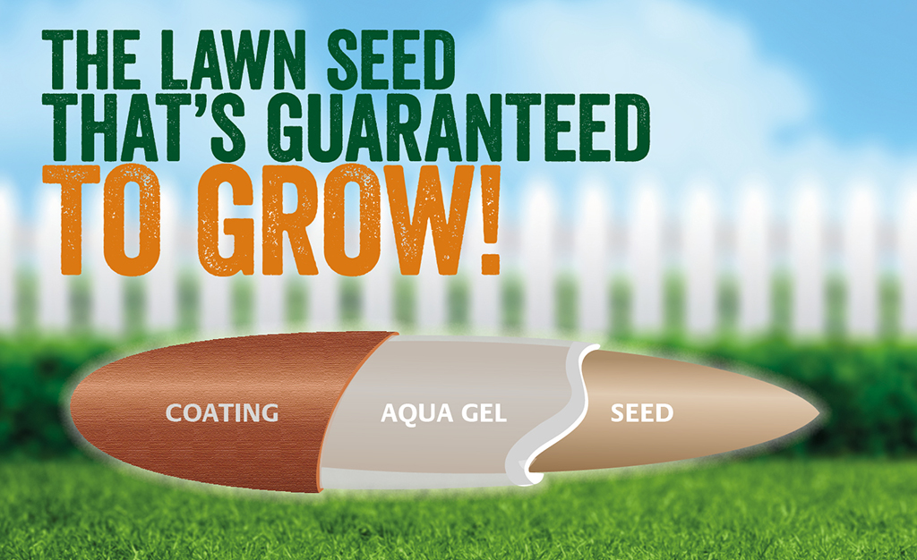 Gro-Sure Smart Lawn Seed