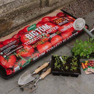 Westland Big Tom Tomato Planter