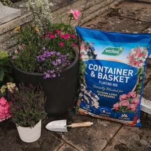 compost bag and planted pots