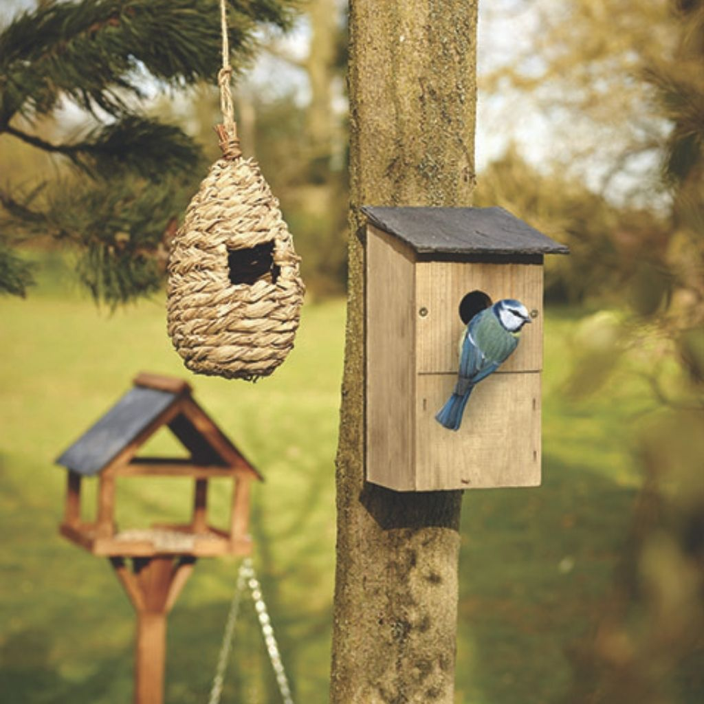 nest box in use