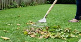 kent & stowe lawn and leaf rake in use