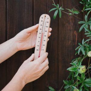 wooden thermometer in use
