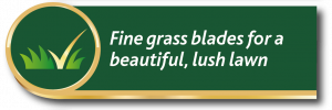 Gro-sure lawn seed promise: fine grass blades for a beautiful, lush lawn
