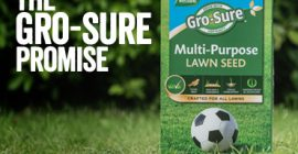 The Gro-Sure Lawn Seed Promise