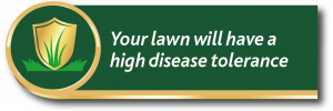 Gro-sure lawn seed promise: your lawn will have a high disease tolerance