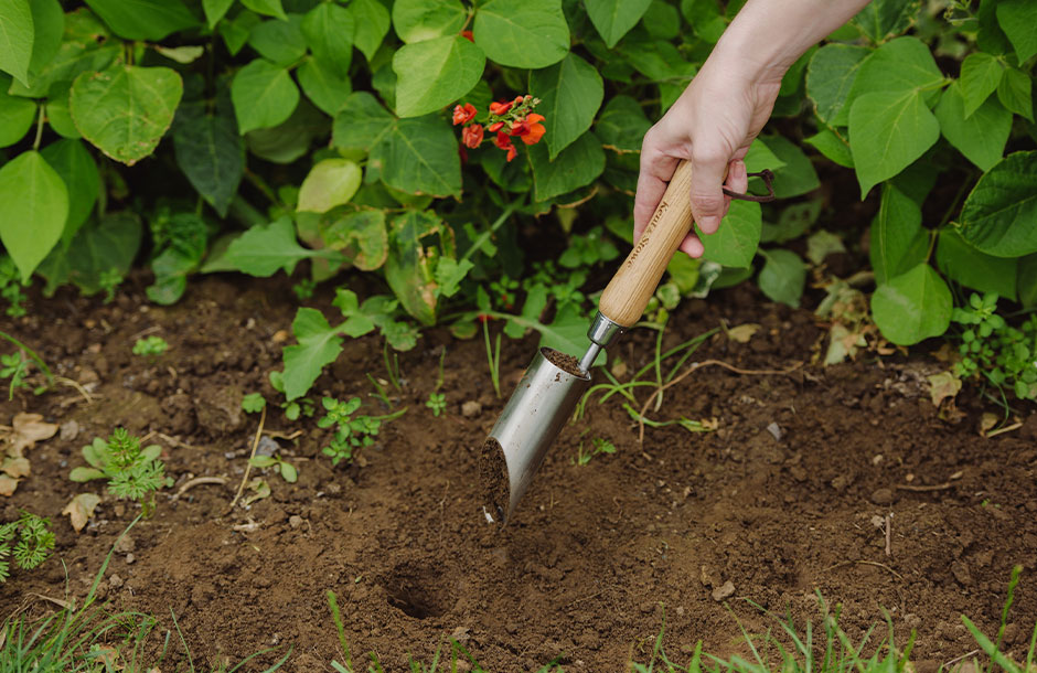 kent & stowe small bulb planting tool in use