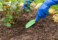 flower soil