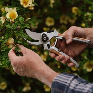 Eversharp™ Bypass Secateurs in use