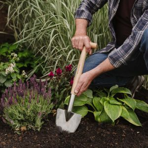 Stainless Steel Perennial Spade in use